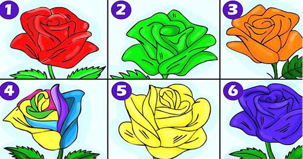 Ruža koju odaberete će otkriti sve o vama!