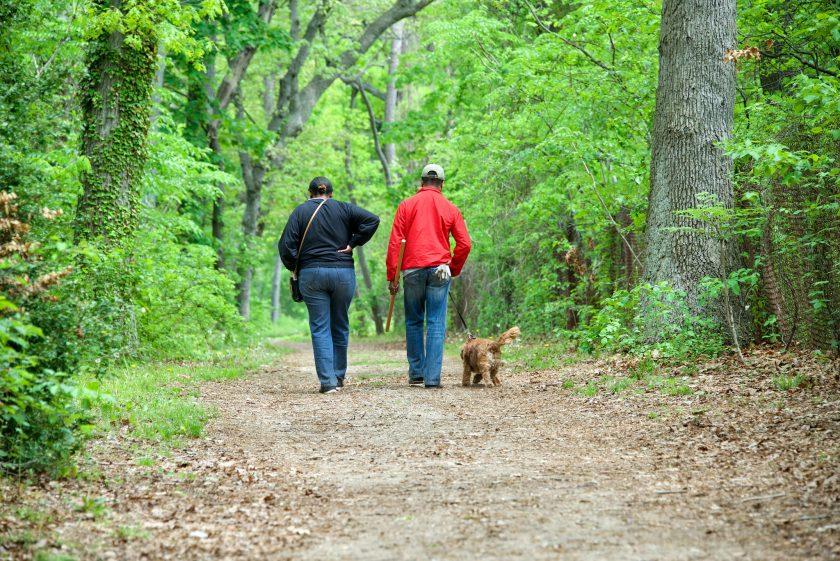 Dobrobiti hodanja bolje od trčanja: 10.000 KORAKA DNEVNO ZA ZDRAVIJE SRCE, MIRNIJI SAN I STABILAN ŠEĆER